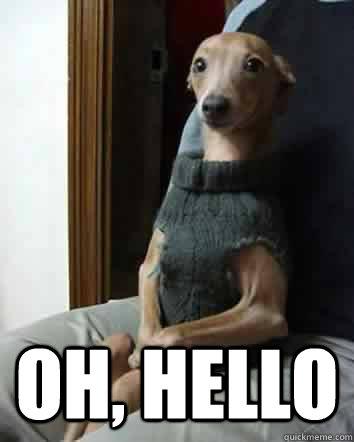 Oh Hello Intelligent Dog Quickmeme