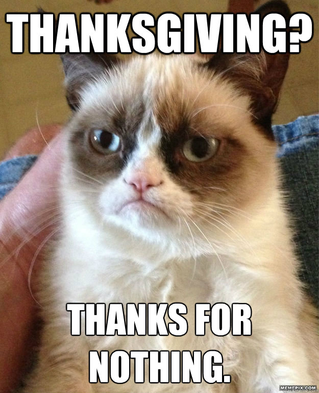 THANKSGIVING? THANKS FOR NOTHING.  Grumpy Cat Thanksgiving