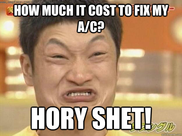 how much it cost to fix my a/c? Hory Shet!