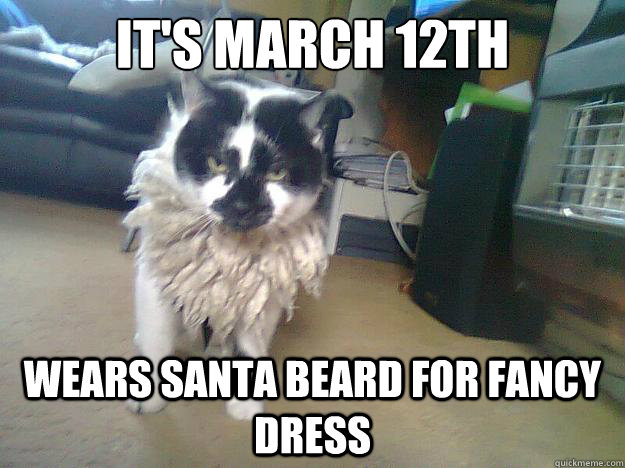 It's March 12th Wears Santa Beard for fancy dress