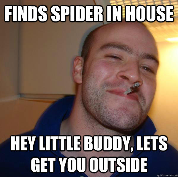Finds spider in house Hey little buddy, lets get you outside - Finds spider in house Hey little buddy, lets get you outside  Good Guy Greg