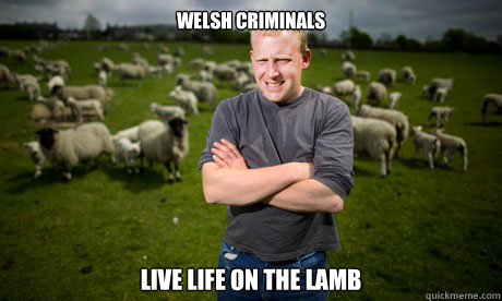 welsh criminals live life on the lamb