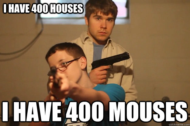 i have 400 houses i have 400 mouses
