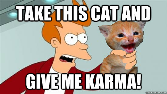 Take this cat and give me karma! - Take this cat and give me karma!  GIVE ME KARMA!