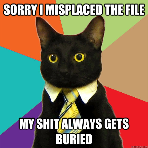 sorry I misplaced the file My shit always gets buried - sorry I misplaced the file My shit always gets buried  Business Cat