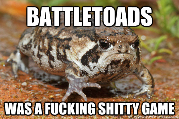 battletoads was a fucking shitty game - battletoads was a fucking shitty game  grumpy toad