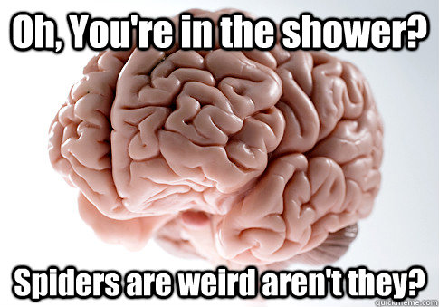 Oh, You're in the shower? Spiders are weird aren't they? - Oh, You're in the shower? Spiders are weird aren't they?  Scumbag Brain