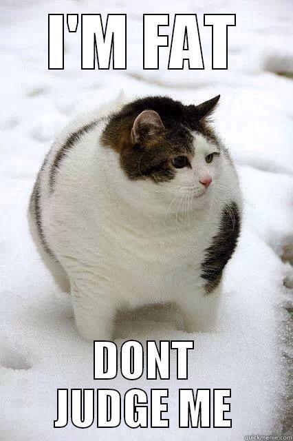 0a9ed65bcb35f0e8ad8290f7c13b592755f089bcd9dc345c8080e5a9da92dd0d i'm fat don't judge me!! quickmeme,Don T Judge Me Meme