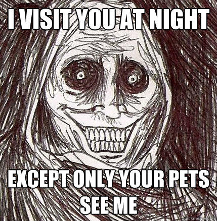 I visit you at night Except only your pets see me - I visit you at night Except only your pets see me  Horrifying Houseguest
