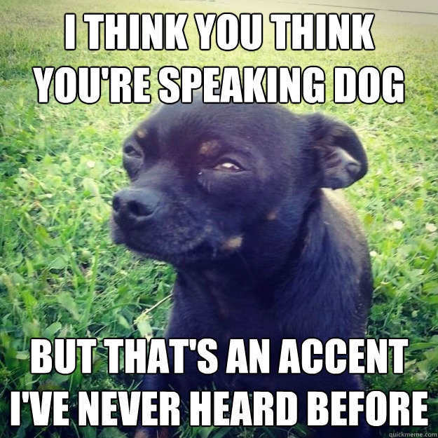 I think you think you're speaking Dog But that's an accent I've never heard before - I think you think you're speaking Dog But that's an accent I've never heard before  Skeptical Dog