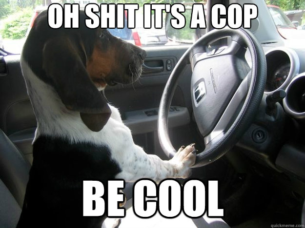 oh shit it's a cop be cool