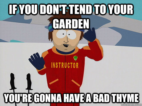 If you don't tend to your garden You're gonna have a bad thyme