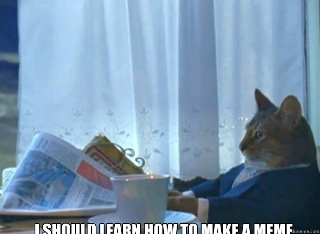 I should learn how to make a meme