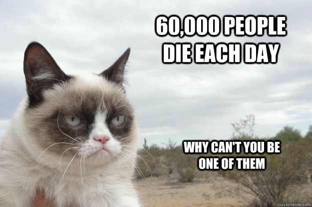 60,000 people die each day  why can't you be one of them - 60,000 people die each day  why can't you be one of them  Grump Cat