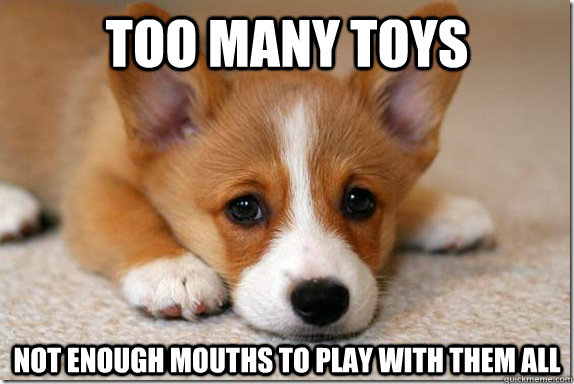 too many toys not enough mouths to play with them all