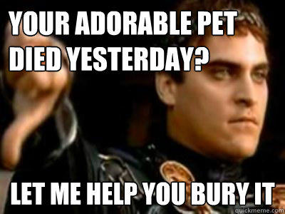 Your adorable pet died yesterday? Let me help you bury it  Downvoting Roman