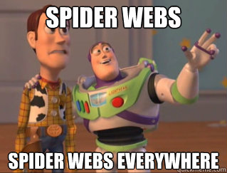 Spider webs Spider webs everywhere
