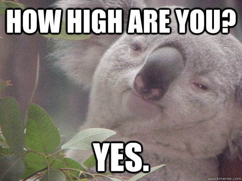 How high are you? Yes.