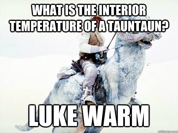What is the interior temperature of a Tauntaun? Luke Warm - What is the interior temperature of a Tauntaun? Luke Warm  Misc