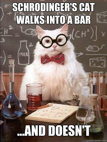 Schrodinger's Cat walks into a bar ...and doesn't  Chemistry Cat