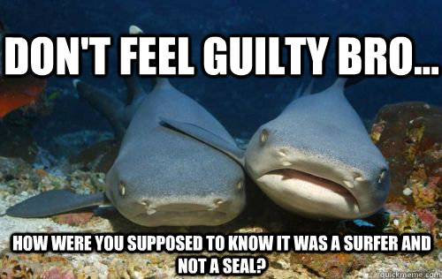 Don't feel guilty bro... How were you supposed to know it was a surfer and not a seal? - Don't feel guilty bro... How were you supposed to know it was a surfer and not a seal?  Compassionate Shark Friend