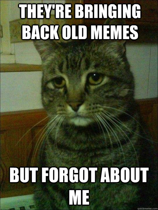 They're bringing back old memes but forgot about me - They're bringing back old memes but forgot about me  Depressed cat