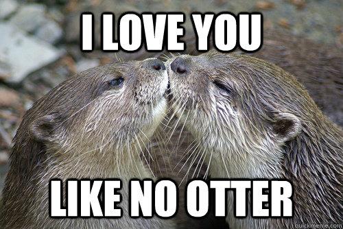 I love you like no otter - I love you like no otter  I Love You Like No Otter