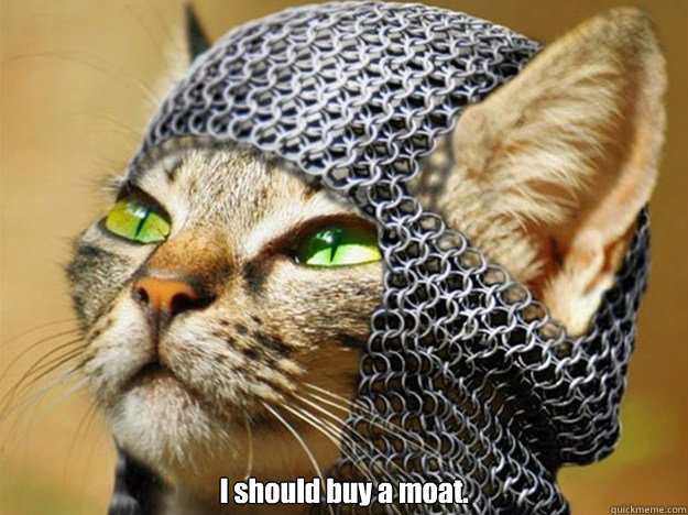 I should buy a moat. -  I should buy a moat.  Misc