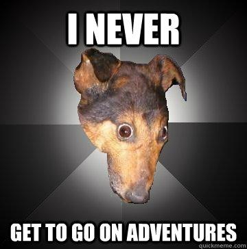 I NEVER GET TO GO ON ADVENTURES  Depression Dog