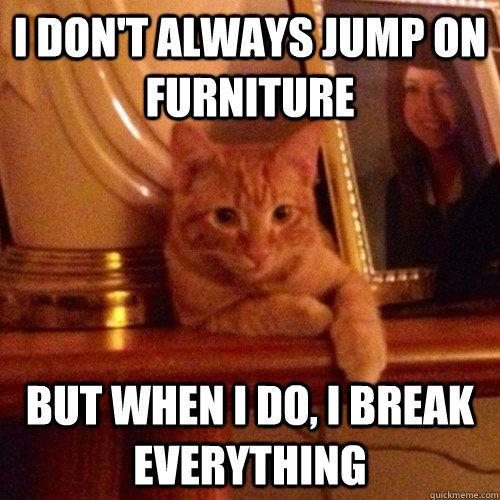 I don't always jump on furniture But when I do, I break everything