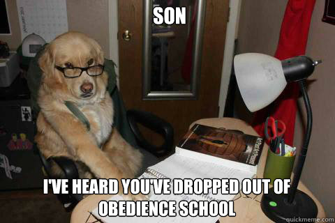 Son I've heard you've dropped out of obedience school - Son I've heard you've dropped out of obedience school  Financial Advice Dog