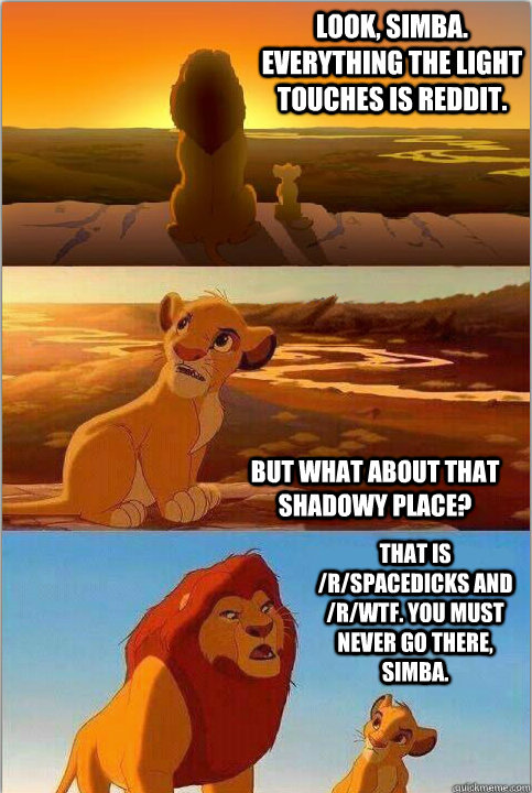 Look, Simba. Everything the light touches is reddit. But what about that shadowy place? That is /r/spacedicks and /r/wtf. You must never go there, Simba.
