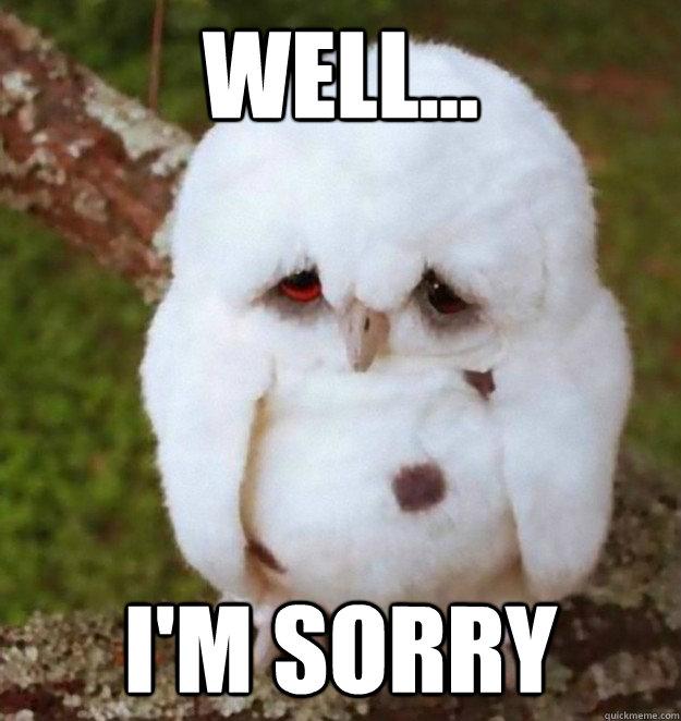 0c1c276e6cd2ca8efd82b70922b2d70df5fdc6c5d8cdeebdcafbf58936346a60 well i'm sorry no sleep heres sad owl quickmeme,Im Sorry Meme