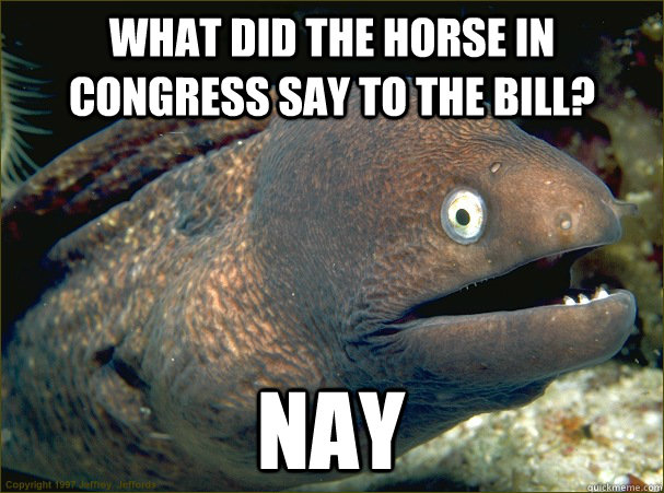 what did the horse in congress say to the bill? nay - what did the horse in congress say to the bill? nay  Bad Joke Eel