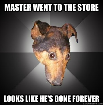 Master went to the store Looks like he's gone forever - Master went to the store Looks like he's gone forever  Depression Dog