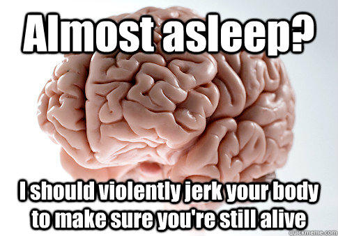 Almost asleep? I should violently jerk your body to make sure you're still alive  - Almost asleep? I should violently jerk your body to make sure you're still alive   Scumbag Brain