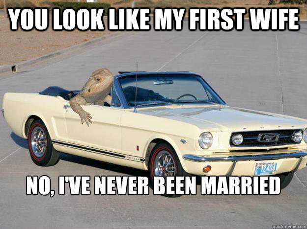 You look like my first wife No, I've never been married   - You look like my first wife No, I've never been married    Pickup Dragon