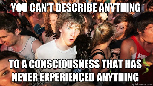 You can't describe anything to a consciousness that has never experienced anything - You can't describe anything to a consciousness that has never experienced anything  Sudden Clarity Clarence