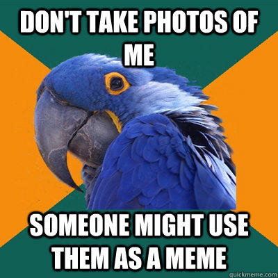 Don't take photos of me someone might use them as a meme - Don't take photos of me someone might use them as a meme  Paranoid Parrot