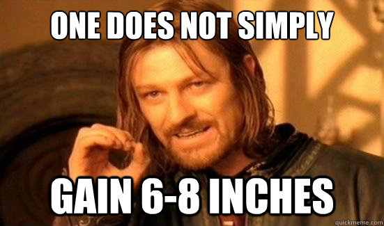 One Does Not Simply Gain 6-8 inches - One Does Not Simply Gain 6-8 inches  Boromir