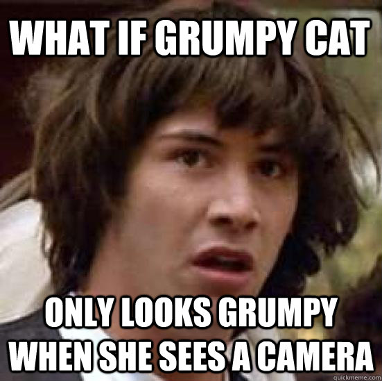 what if grumpy cat only looks grumpy when she sees a camera - what if grumpy cat only looks grumpy when she sees a camera  conspiracy keanu