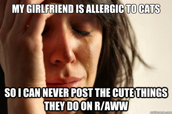 My girlfriend is allergic to cats so I can never post the cute things they do on r/aww - My girlfriend is allergic to cats so I can never post the cute things they do on r/aww  First World Problems