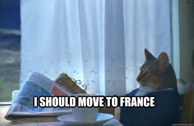 I should move to france - I should move to france  Sophisticated Cat