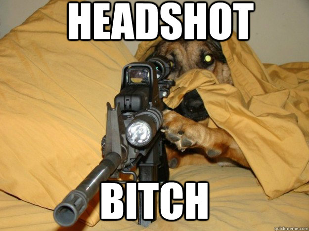 Headshot Bitch Sniper Dog Quickmeme