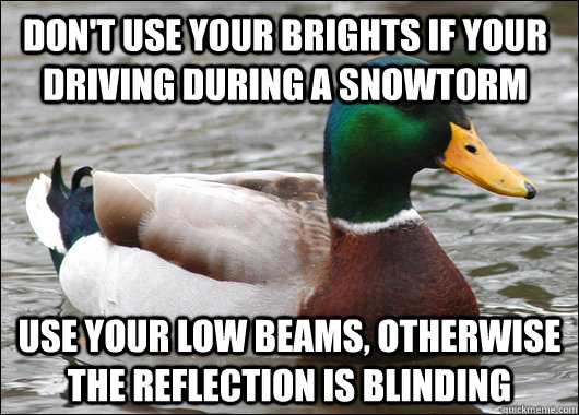 Don't use your brights if your driving during a snowtorm Use your low beams, otherwise the reflection is blinding - Don't use your brights if your driving during a snowtorm Use your low beams, otherwise the reflection is blinding  Actual Advice Mallard
