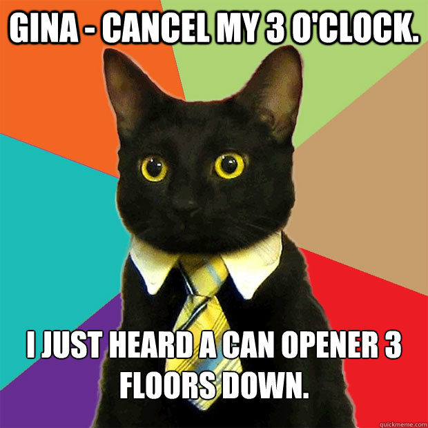 GINA - cancel my 3 o'clock. I just heard a can opener 3 floors down. - GINA - cancel my 3 o'clock. I just heard a can opener 3 floors down.  Business Cat