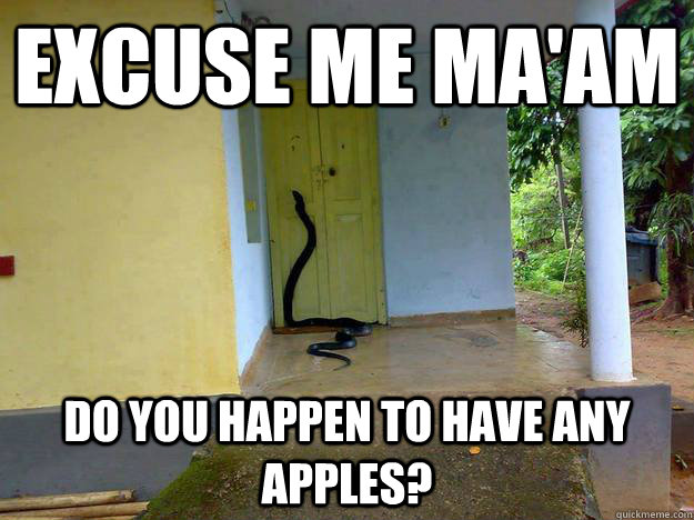 Excuse me ma'am Do you happen to have any apples?