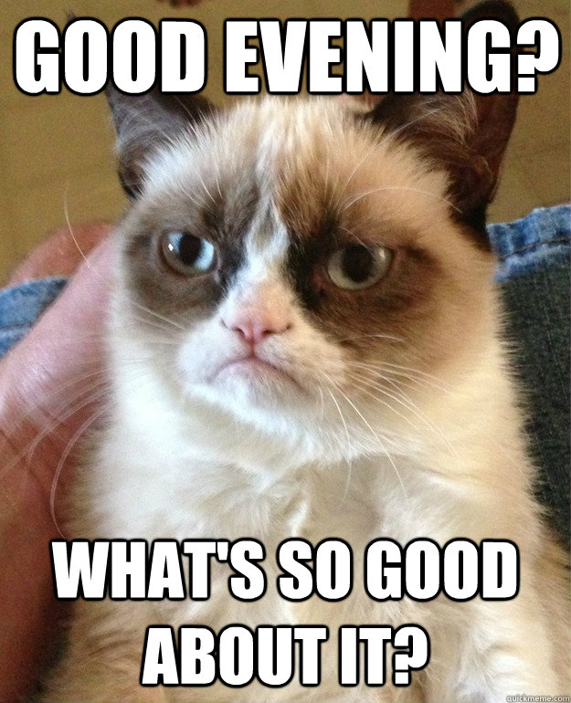 Good Evening Whats So Good About It Grumpy Cat Quickmeme