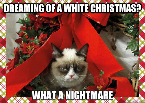 Dreaming of a white christmas? What a nightmare - Dreaming of a white christmas? What a nightmare  A Grumpy Cat Christmas