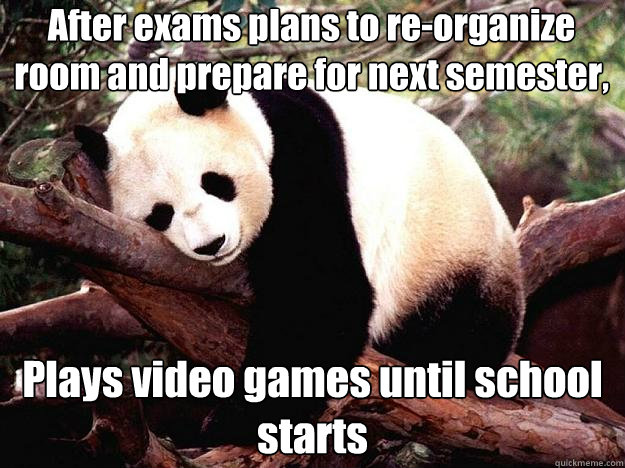 After exams plans to re-organize room and prepare for next semester, Plays video games until school starts  Procrastination Panda